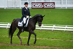 Dibowski Andreas (GER) - Hans Dampf CR<br /> FEI World Championship for Young Horses Le Lion d'Angers 2012<br /> © Hippo Foto - Jon Stroud