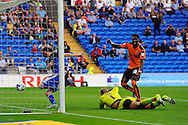 Cardiff City's Joe Mason (l) is denied a goal by the linesman (not pictured) as its disallowed. Skybet football league championship match, Cardiff city v Wolverhampton Wanderers at the Cardiff city stadium in Cardiff, South Wales on Saturday 22nd August 2015.<br /> pic by Carl Robertson, Andrew Orchard sports photography.