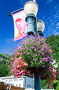 Alaska. Juneau. Colorful flowers hang from lampost in downtown area.