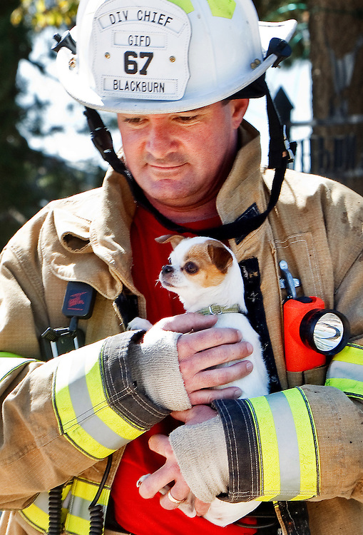 Emergency Medical Services Division Chief and interim fire chief Russ Blackburn carries Midget, a Chihuahua-Japanese Chin mix, to her owners, Betty and Robert Niedfelt, after the dog was rescued from a fire Friday afternoon at 1008 S. Stuhr Road. All nine of the Niedfelt's dogs were rescued from the fire with help from family and firefighters. (Independent/Matt Dixon)