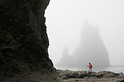 A man walks alone below large sea stacks at Rialto Beach, Olympic National Park, Washington.