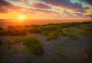 Sunset view - Long Beach, WA