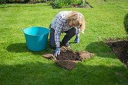 Repairing a dip in a lawn. Adding compost.