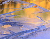 Patterns of ice on pond