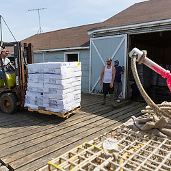 Friendship Lobster Co-op president Jim Wotton moves boxes of bait on the co-op wharf in Friendship, Maine.