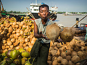 27 OCTOBER 2015 - YANGON, MYANMAR:  A man throws coconuts to a waiting truck at a pier along the Twante Canal in Yangon.   PHOTO BY JACK KURTZ