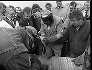 Cork / Dublin Gas Pipeline.28.04.1982.04.28.1982.28th April 1982.1982...At Brownbarn,Kingswood,Dublin the Minister for Industry and Energy, Mr Albert Reynolds T.D. performed the ceremonial first weld to officially start the project. .The weld process begins and Minister Reynolds tackles the job with some assistance from the assembled onlookers.