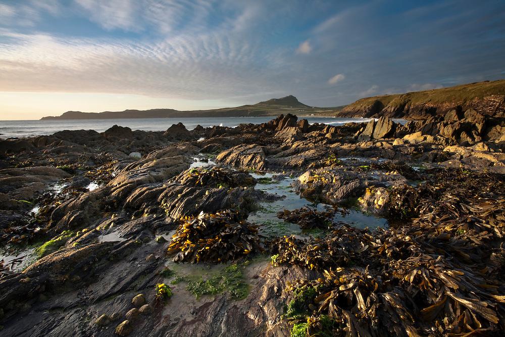 Sunset over the rocks on Porthselau Beach looking towards St David's Head, Pembrokeshire, Wales