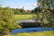 Sheep grazing in pasture by River Kennet, West Overton, Wiltshire, England, UK