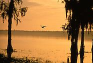 Cross Creek, Florida 1965