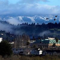 A rare snowfall covers the Santa Cruz Mountains above Santa Cruz, California.<br /> Photo by Shmuel Thaler <br /> shmuel_thaler@yahoo.com www.shmuelthaler.com