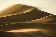 Eine Sanddüne der Namib auf ihrer immerwährenden, windgetriebenen Wanderschaft. Die Beschaffenheit des Sandes ist auf der dem Wind zugewandten Seite völlig anders als auf dem windgeschützen Rutschhang. Während der Wind den Sand zu einer stabileren Oberfläche verfestigt, besteht die Rückseite der Düne aus völlig locker aufgeworfenen Sand, in dem man bei jedem Schritt fast knietief einsinkt. Das Rieseln und Rutschen des Sandes bei Wind oder beim Überschreiten der Dünen geschieht mit charakterisischen und sehr variantenreichen Geräuschen, es kann Rascheln, Prasseln, fein Summen, tief Brummen oder Knirschen beim Abgang regelrechter Sandlavinen. | A Namib dune on the move. Close to Swakopmund. The Namib Dune Sea is formed by the powerful force of desert winds. These winds gradually push the dunes in a north-westerly direction.