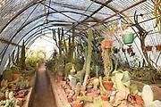 Moortens Botanical Garden and Cactarium