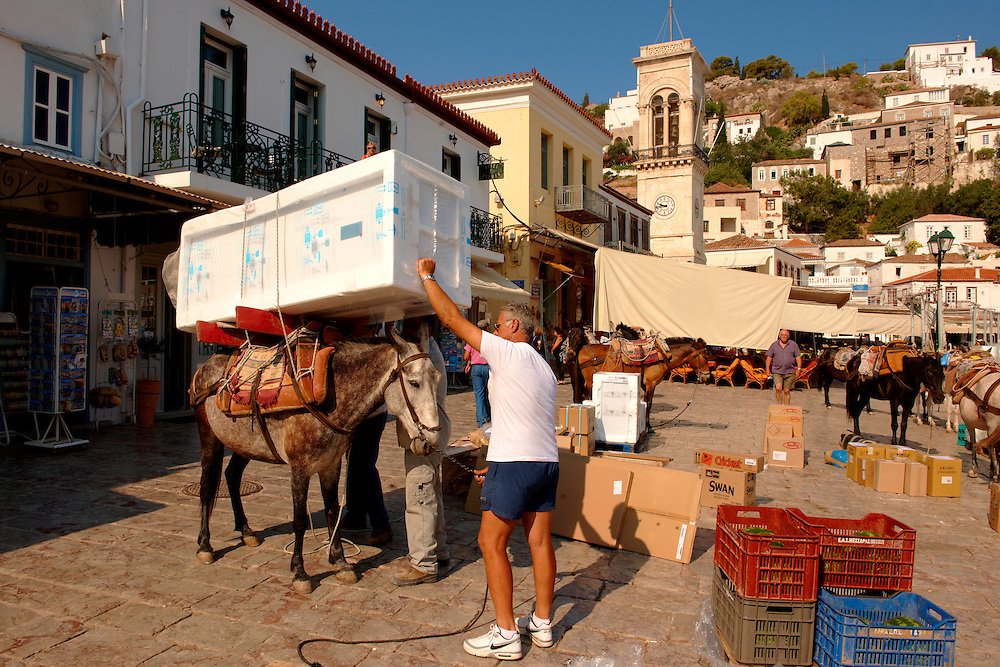 Pack Pony moving a fridge on Hydra,  Greek Saronic Islands .<br /> <br /> Visit our GREEK HISTORIC PLACES PHOTO COLLECTIONS for more photos to download or buy as wall art prints https://funkystock.photoshelter.com/gallery-collection/Pictures-Images-of-Greece-Photos-of-Greek-Historic-Landmark-Sites/C0000w6e8OkknEb8