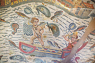 Close up detail picture of the Roman mosaics of the Room of Fishing Cupids depicting cupids fishing from boats using a fishing trap and a rod and line, room no 24 at the Villa Romana del Casale, first quarter of the 4th century AD. Sicily, Italy. A UNESCO World Heritage Site.<br /> <br /> The Fishing cupids room was a dining room for guests of the Villa Romana del Casale. The mosaic floor represents a sea scene with four boats from which cupids are busy fishing. The mosaic depicts sea around the boats abounds with marine life. The mosaic show several Roman fishing techniques using nets, fishing lines, harpoon and fish traps. .<br /> <br /> If you prefer to buy from our ALAMY PHOTO LIBRARY Collection visit : https://www.alamy.com/portfolio/paul-williams-funkystock/villaromanadelcasale.html<br /> Visit our ROMAN MOSAIC PHOTO COLLECTIONS for more photos to buy as buy as wall art prints https://funkystock.photoshelter.com/gallery/Roman-Mosaics-Roman-Mosaic-Pictures-Photos-and-Images-Fotos/G00008dLtP71H_yc/C0000q_tZnliJD08