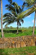 Lava rock wall, Kauai, Hawaii