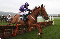 Red Hot Chilly ridden by Paddy Brennan on their way to victory in the Swanee River Supports Countryside Alliance Novices' Handicap Hurdle during day one of the November Meeting at Cheltenham Racecourse.