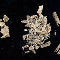 Nederland, Leiden, 31 oktober 2016.<br /> Onderzoek naar vondst Merovingisch grafveld in Echt.<br /> Een deel van de vondst wordt onderzocht in het lab in Leiden.<br /> Op de foto: stukjes gecremeerde stukjes bot van o.a. de arm.<br /> <br /> Foto: Jean-Pierre Jans