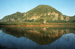 Mogote or limestone rock formation reflected in lake on outskirts of Vinales; Cuba,