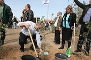 Israel, Southern District, Netivot (founded 1956) The local residants plant trees in the city