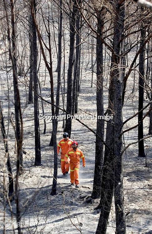 V. 02. Valencia, 14/08/2004. Dos bomberos realizan labores de control en el Parque Natural de la Sierra Calderona donde desde que se iniciase el incendio el pasado jueves se han quemado 716 hectáreas de las que 653 corresponden a masa forestal. EFE / Kai Försterling.