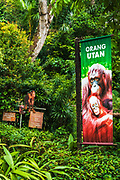 Interpretive sign at the orangutan exhibit, Singapore Zoo, Singapore, Republic of Singapore