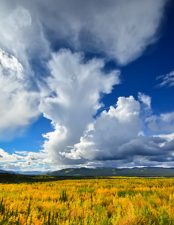 Clouds develop over Yukon fall colours