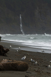 Third Beach Waterfall,  Third Beach, Olympic National Park, Washington, US