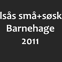 kolsaas_smaa_2011