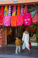 Inde, Rajasthan, Jaipur la ville rose, // India, rajasthan, Jaipur the Pink City,