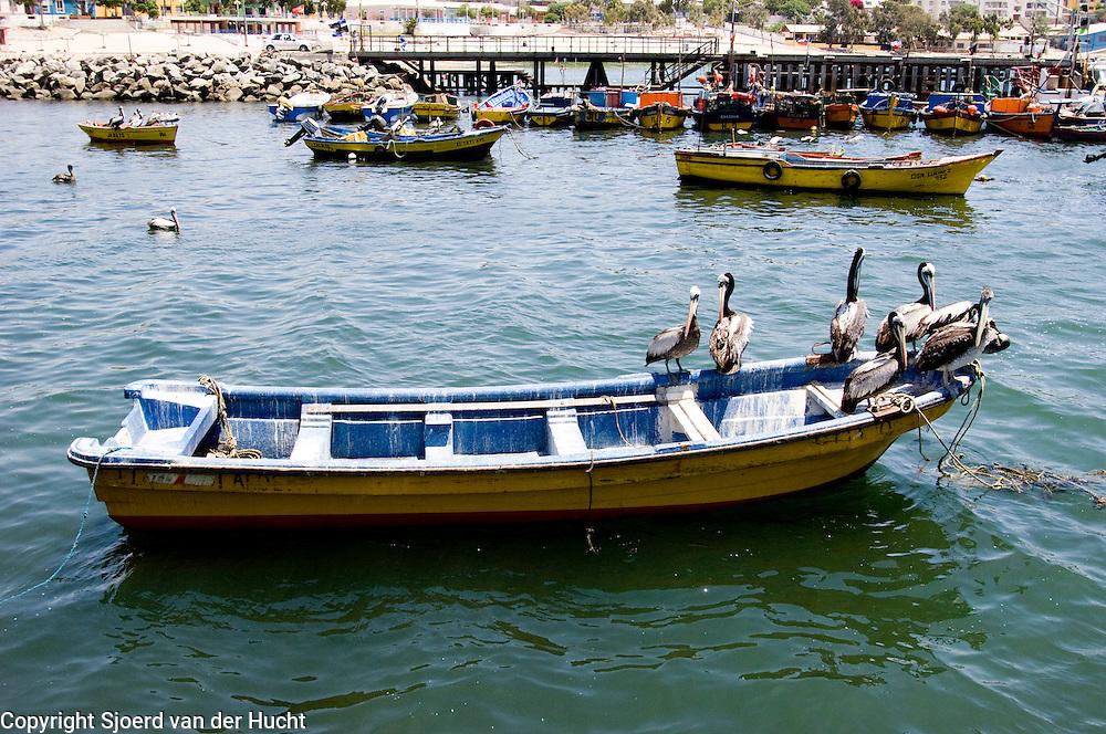 The harbour of Caldera
