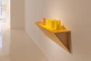 "Haim Steinbach Installation ""Display #67 - Forsythia - PLS5/2SB"" at Louis Vuitton Maison, 2010"