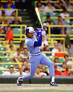 CHICAGO - 1986: Jesse Barfield of the Toronto Blue Jays bats during an MLB game at Comiskey Park in Chicago Illinois during the 1986 season. (Photo by Ron Vesely) Subject:   Jesse Barfield