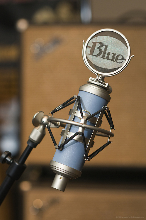 Blue Microphones' Bluebird in a birdnest with Fender amps in the background in the live recording room, Thursday, July 26, 2012, at Liquid Sound Studios in Greenville, Ind. (Photo by Brian Bohannon)