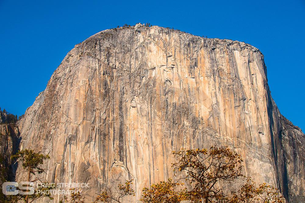 Yosemite photo trip November 2020. El Capitan