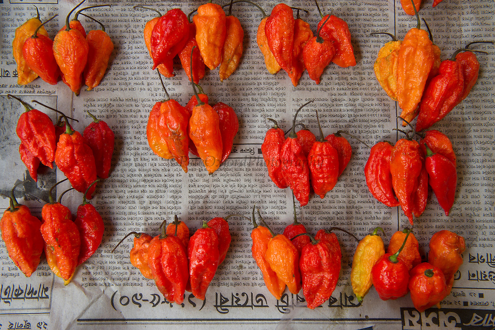 Chilli peppers in market<br /> Upper Subansiri District<br /> Arunachal Pradesh<br /> North East India