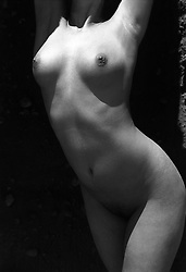 torso of a nude female torso