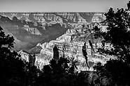 Arizona Black and White