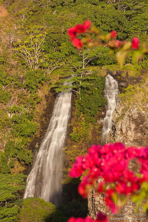 """Colorful flowers frame 'Opaeka'a Falls, which plunges about 150 feet down a  rock face in eastern Kaua'i. 'Opaeka'a means """"rolling shrimp"""" in Hawaiian. They apparently used to find shrimp at the base of the falls."""