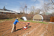 "Kipp Nash, founder of Community Roots Farm, plows a field in a private Boulder, Colorado backyard. Nash operates his ""Neighborhood Supported Agriculture"" farm out of his neighbors' front and backyards."
