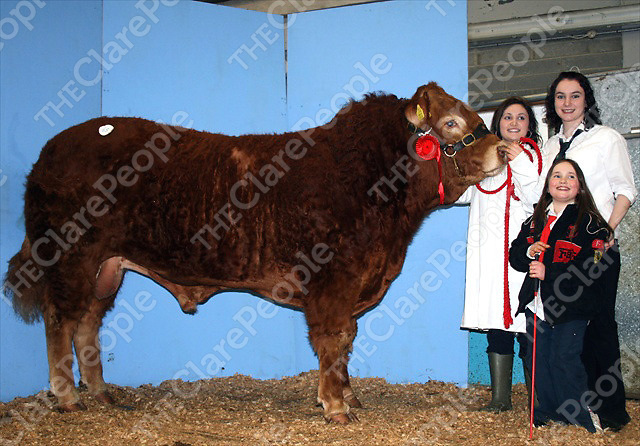 Top price of ?15,000 at the Irish Limousin Society spring sale in Roscrea went to Brendan Clancy, Mullagh for his November 2007 born bull, ?Moloskey Claus? . He was sold to Norman Cruinshank for his well know Normande herd near Lanark in Scotland and is pictured here with young admirers at the Roscrea sale.