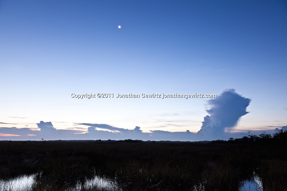The Florida Everglades during rainy season, a few minutes before sunrise, seen from the Pa-hay-okee Overlook. WATERMARKS WILL NOT APPEAR ON PRINTS OR LICENSED IMAGES.