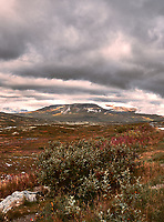 British Columbia Panorama from the Haines Highway. 4 of 4