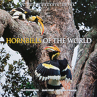 Hornbills Of The World is a photographic guide that gives descriptions of all the species and other general information like their unique breeding behavior.  Tim's photographs are used for most of the Asian species of hornbills.  This soft cover book is by Dr. Pilai Poonswad of Thailand, Dr. Alan Kemp of South Africa and Morten Strange from Singapore.<br /> <br /> To purchase please visit our Fine Art Store at the link above.<br /> <br /> www.TimLamanFineArt.com