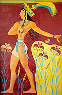"""""""Prince of lilies"""" or """"Priest-king Relief"""", plaster relief at the end of the Corridor of Processions, restored by Gilliéron, Knossos Minoan archaeological site ..<br /> <br /> Visit our GREEK HISTORIC PLACES PHOTO COLLECTIONS for more photos to download or buy as wall art prints https://funkystock.photoshelter.com/gallery-collection/Pictures-Images-of-Greece-Photos-of-Greek-Historic-Landmark-Sites/C0000w6e8OkknEb8 <br /> .<br /> Visit our MINOAN ART PHOTO COLLECTIONS for more photos to download  as wall art prints https://funkystock.photoshelter.com/gallery-collection/Ancient-Minoans-Art-Artefacts-Antiquities-Historic-Places-Pictures-Images-of/C0000ricT2SU_M9w"""