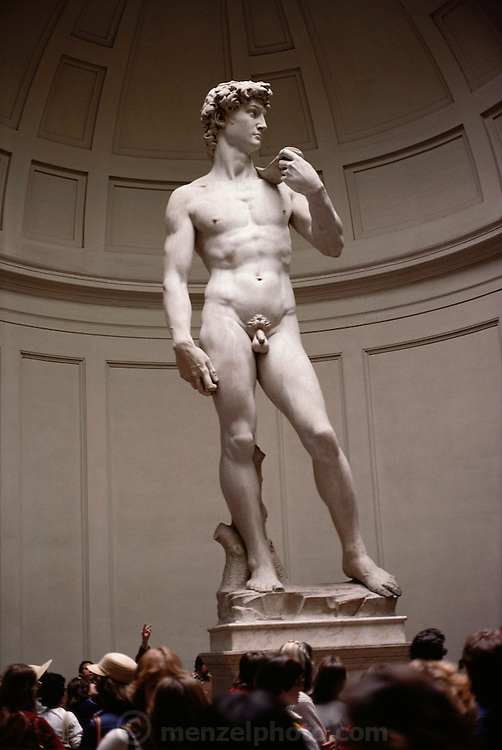 Michelangelo's David, sculpted from 1501 to 1504, in Florence, Italy.