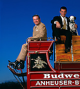 A. Busch III (left) is the Chairman of the Board and his son August A. Busch IV is president of the beer company.