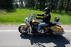 Moto-journalist Marjorie Kleiman, aks Shadow, on the Cycle Source Ride up Vanocker Canyon to Nemo during the Sturgis Black Hills Motorcycle Rally. SD, USA. Wednesday, August 7, 2019. Photography ©2019 Michael Lichter.