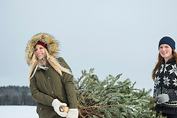 Two teenage girls carrying a christmas tree in snowy landscape, Bavaria, Germany