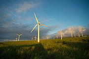 Windmills, Upolu, North Kohala, Island of Hawaii